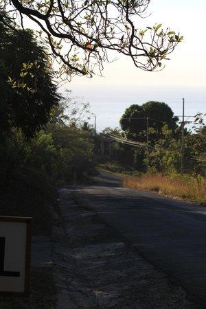 Three Monkeys: road going down to Montezuma centre