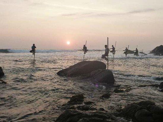 Shanthi Beach Resort: ... und jeden Abend Stelzenfischer beim Sonnenuntergang