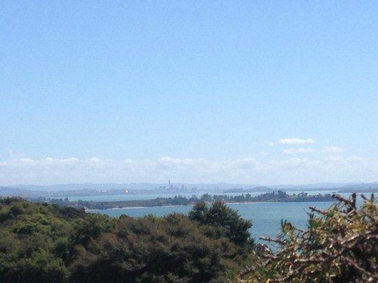 Mudbrick Vineyard & Restaurant: Auckland Central View
