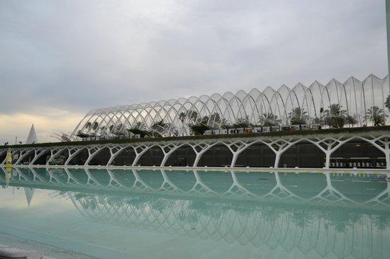 Ciudad de las Artes y las Ciencias: View 8