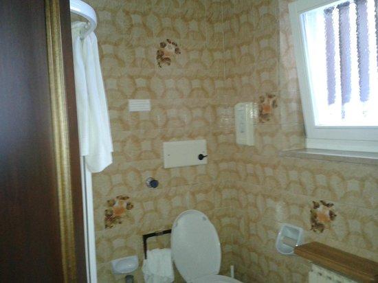 Hotel Regina delle Dolomiti: Bathroom