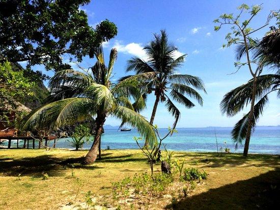 Sangat Island Dive Resort : beach