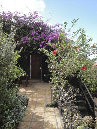 El Sitio: Garten