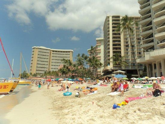 Waikiki Beach: カタマランもここから出航します