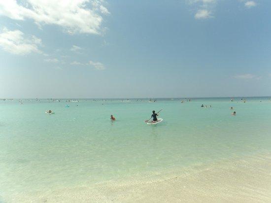 Waikiki Beach: あまりロコは見かけません
