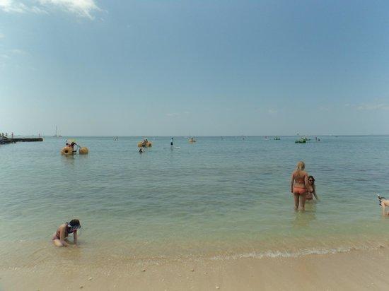 Waikiki Beach: 気持ち良さそうです