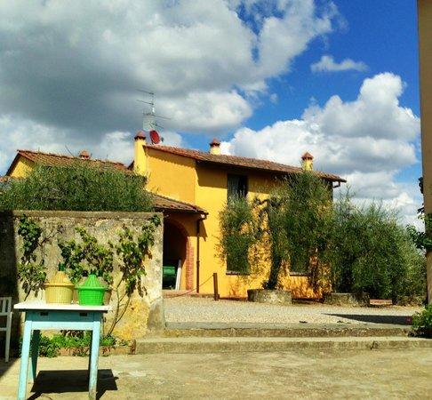 Agriturismo Il Pintello: View of the farmhouse
