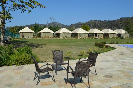 The Golden Tusk: Tents available at the hotel