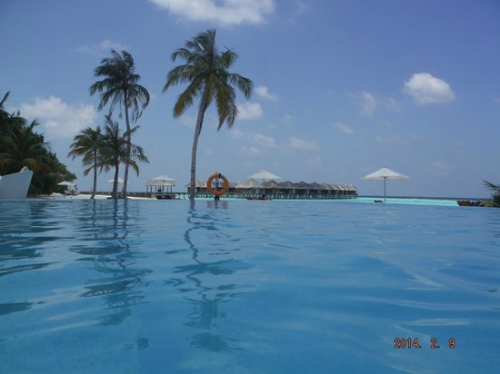 Maafushivaru: View of the sea villas from the pool