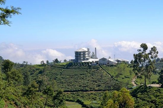 Heritance Tea Factory: A distant view of the hotel