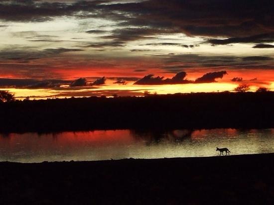 African Perfection Jeffreys Bay : zonsondergang