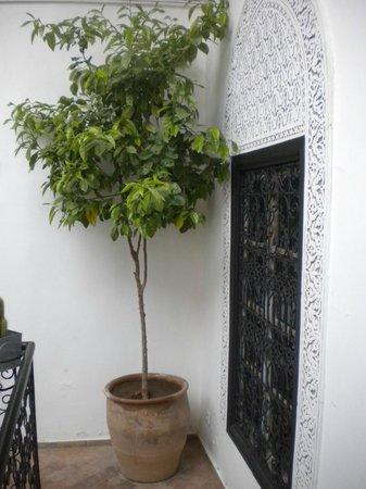 RIAD BAB 54 : Terrace