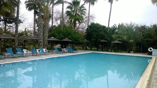 Veronica Hotel : Basen hotelowy otoczony roślinnością