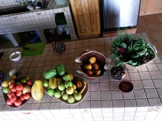 Farm of Life: Früchte-Kräuter