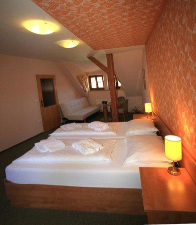 Penzion a lazebna Bily jednorozec : Our suite