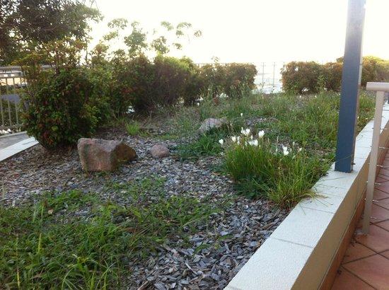 Ramada Resort Shoal Bay: Flower bed - balcony