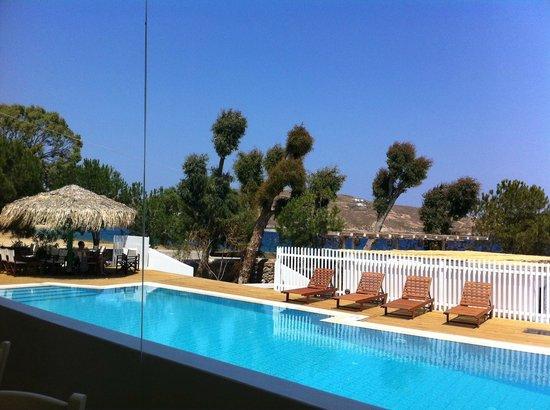 Coralli Camping: Πισίνα