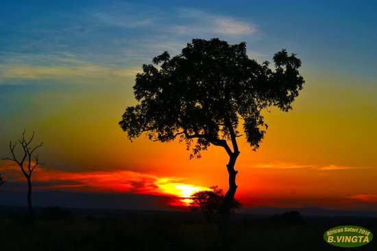 Tydon Safari Camp: Sabi Sunset