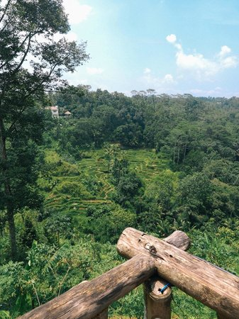 Bali Pulina Agro Tourism: The great view.
