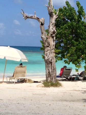 Antigua V.I.P. Tours: One of the 365 beaches!