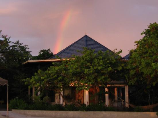 Negril Tree House Resort : Rainbow over Tree House