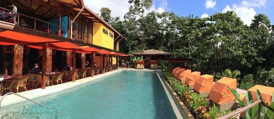 Nayara Springs : Hotel Pool
