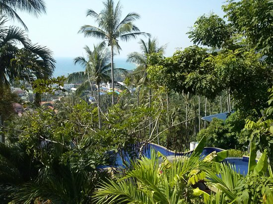 Seaview Paradise Resort Hotel: Blick von Topmost-Villa