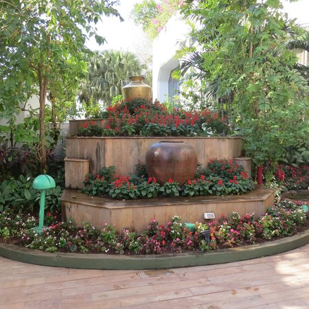 The Leela Mumbai: Colourful Plants