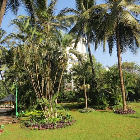 The Leela Mumbai: Beautiful Palms