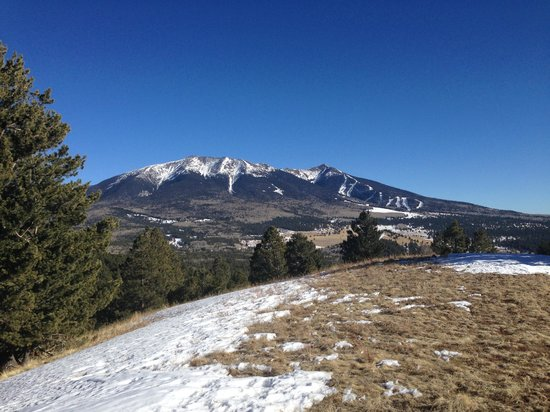 Flagstaff Nordic Center: view from hill on behind most remote yurt
