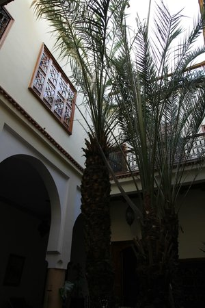 Riad Les Trois Palmiers El Bacha: decorated with taste, very cosy
