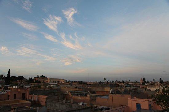 Riad Les Trois Palmiers El Bacha : vue from the terrace