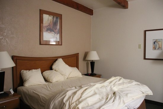 Best Western Canyon De Chelly Inn : Room