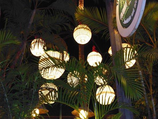 Coconut Garden: and more amazing lanterns