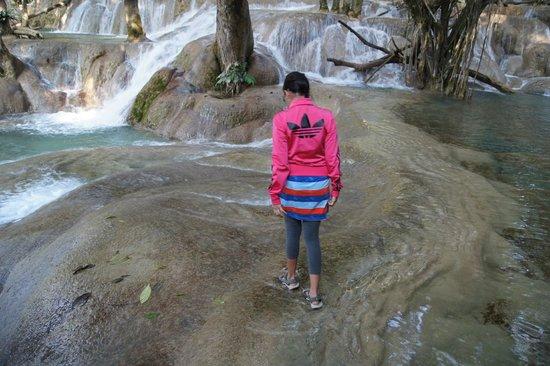 Tad Sae Waterfall : falls