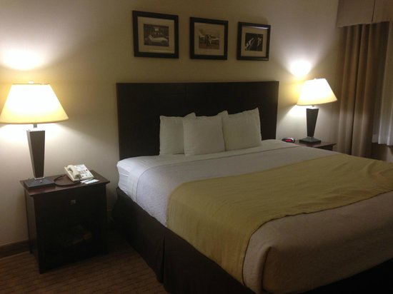 Holiday Inn Los Angeles International Airport: The Main Bed