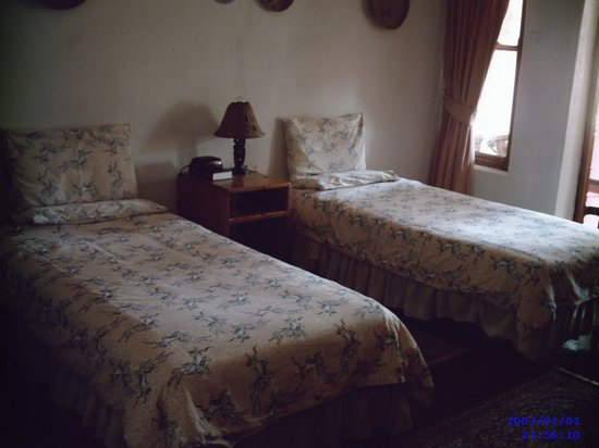 Mbizi Game Park : Twin room at the main lodge