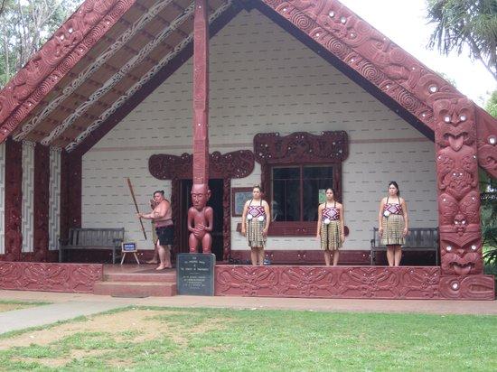 Waitangi Treaty Grounds : Maori show