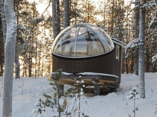 Nellim Wilderness Hotel : One of the new Aurora bubbles
