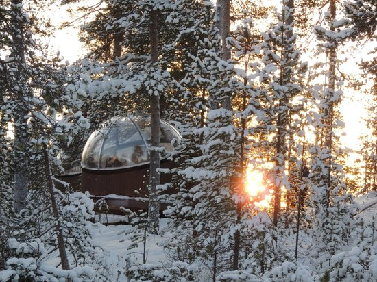 Nellim, Finland: Aurora bubble in the trees