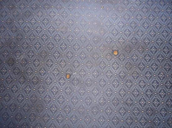 Super 8 Breaux Bridge : Brûlures de cigarettes sur le vieux sofa de notre chambre 124 au 21 janvier 2014.