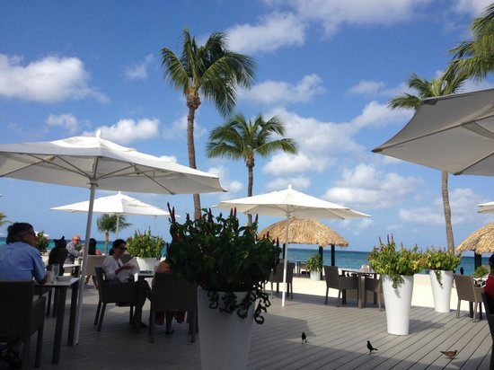Bucuti & Tara Beach Resort Aruba : breakfast view
