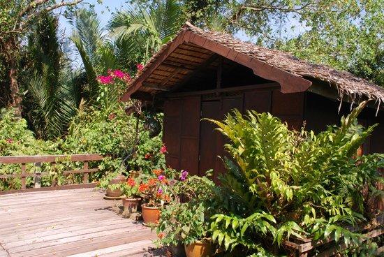 Awi's Yellow House : huts in a beautiful garden setting