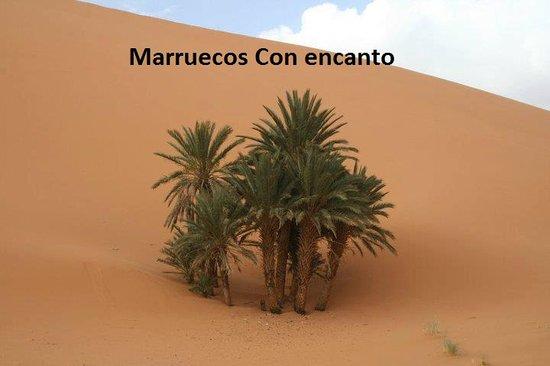 Morocco Sahara 4x4 - Day Tours: desert marruecos con encanto