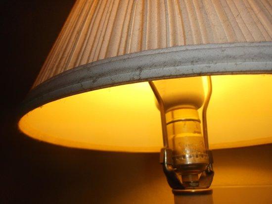 Super 8 San Antonio/I-35 North : Chambre 124 - Pas nettoyée depuis belle lurette - 21 janvier 2014