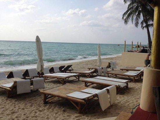 Samui Beach Resort: Les transats de l'hôtel, juste en dessous de la piscine