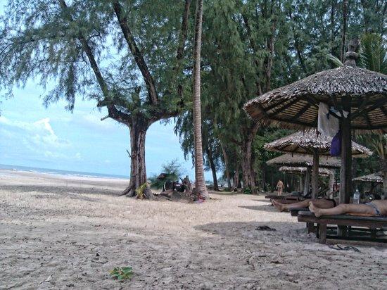 Aana Resort & Spa: На пляж нужно плыть на каное.
