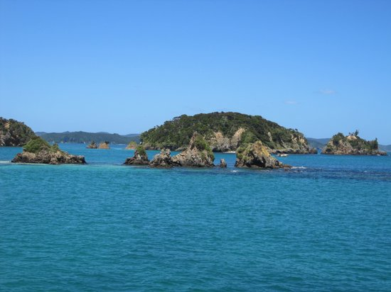 Explore - Discover the Bay : Great boat trip