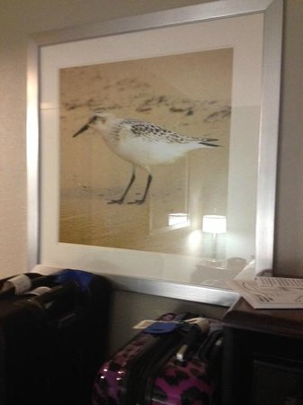 Hampton Inn Beaufort : New pictures in the renovated room