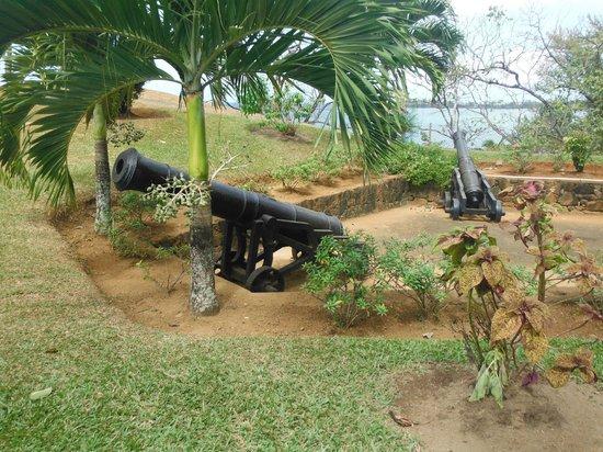 Cannons on Fort Bennett